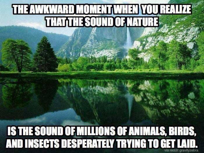Appel à la Nature